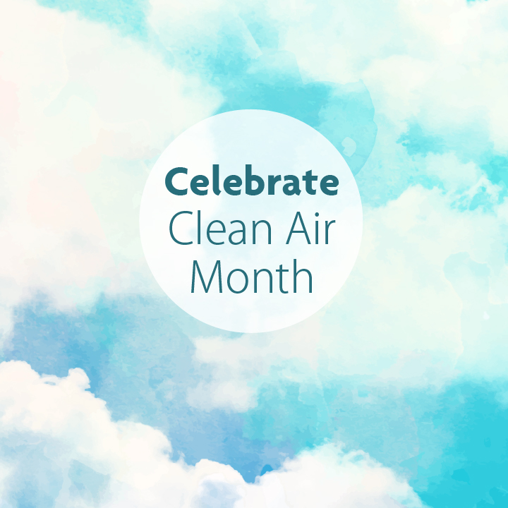 Image result for clean air month